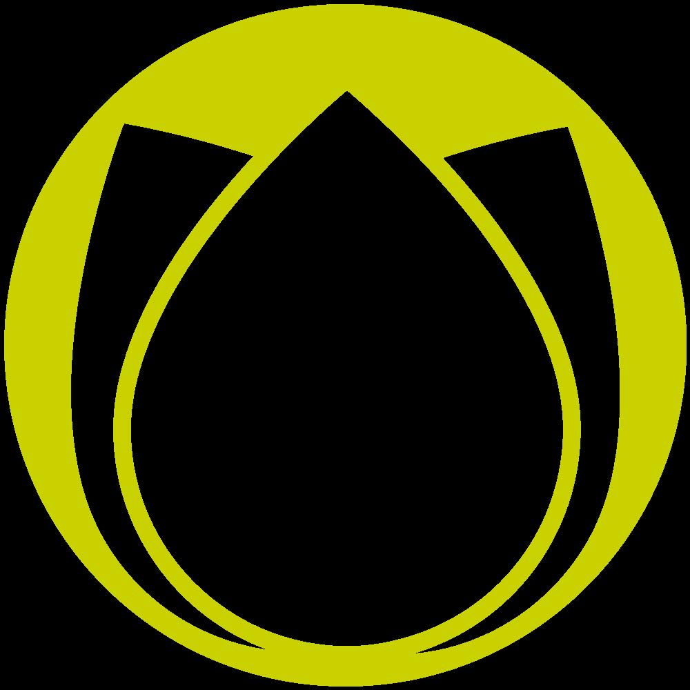 Weiße Orchidee (Phalaenopsis, 60 cm) mit Glasvase