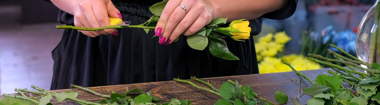 Pflegetipps für Schnittblumen
