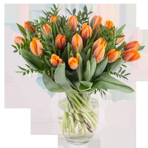 Tulpen Blumen zu Ostern