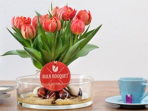 Tulpenstrauß bestellen - Tulpen mit Zwiebeln
