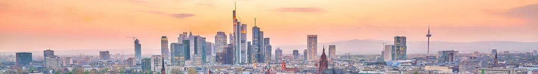 Blumenversand Frankfurt