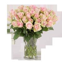 Blumensorte